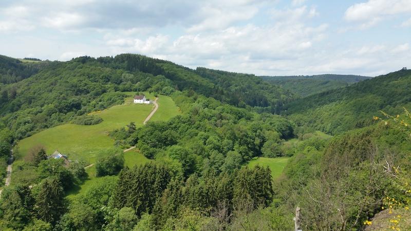 190607 Aussicht Sauerseifen im Tal der kleinen Kyll 2