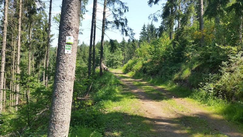 190607 Hangweg Kleine Kyll 2